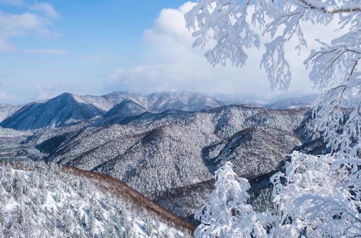 Baumann_Japanese-Mountains